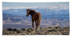 Wild Stallion Of Sand Wash Basin Beach Towel by Nadja Rider