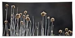 Beach Sheet featuring the photograph Wild Things 1 by Joel Loftus