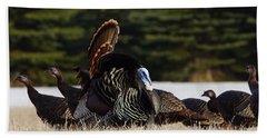 Wild Turkeys Beach Towel by Steven Clipperton