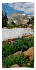 Wildflowers In The Indian Peaks Wilderness Beach Towel