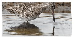 Willet Beach Towel by Bill Wakeley