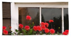 Beach Sheet featuring the photograph Window Box Delight by Jordan Blackstone