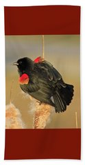 Wings In A Golden Light 2 Beach Towel by Chris Anderson