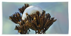 Winter Agave Bloom Beach Towel