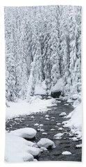 Winter Creek Beach Sheet