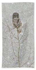 Winter Ghost Beach Towel