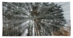 Winter Light In A Forest Beach Towel