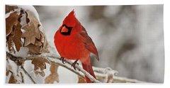 Winter Northern Cardinal Beach Sheet by Lana Trussell
