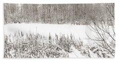 Winter Pond Beach Sheet