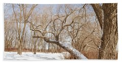 Winter Solitude Beach Towel