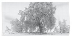 Winter Tree Beach Sheet