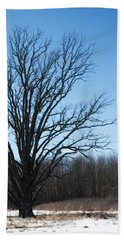 Winter Tree Beach Sheet