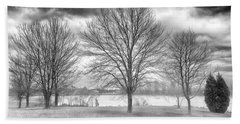 Beach Towel featuring the photograph Winter Trees by Howard Salmon