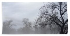 Beach Towel featuring the photograph Winter Trees With Mist by Jeannie Rhode