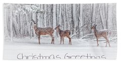 Winter Visits Card Beach Sheet by Karol Livote