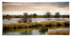 Beach Sheet featuring the photograph Wintery Wetlands by Jordan Blackstone