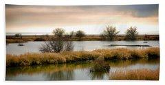 Beach Towel featuring the photograph Wintery Wetlands by Jordan Blackstone