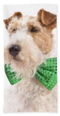 Wire Fox Terrier With Bowtie Beach Towel by Verena Matthew