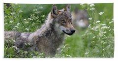 Wolf, Canis Lupus Beach Towel