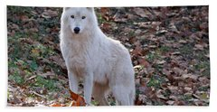 Wolf In Autumn Beach Towel