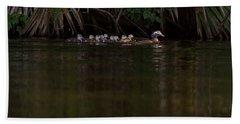 Wood Duck And Ducklings Beach Towel by Paul Rebmann