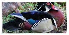 Beach Sheet featuring the photograph Wood Duck by Cynthia Guinn