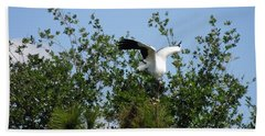 Beach Towel featuring the photograph Wood Stork by Ron Davidson