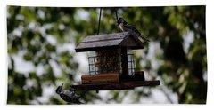 Woodpeckers At Dinner Beach Sheet