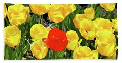 Yellow And One Red Tulip Beach Sheet