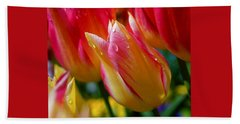 Yellow And Pink Tulips Beach Towel