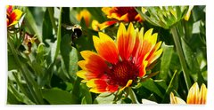Yellow And Red Gaillardias And Bee Beach Sheet