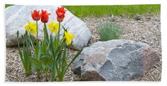 Yellow And Red Tulips With Two Rocks Beach Sheet