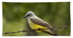Yellow-bellied Fence-sitter Beach Towel by Gary Holmes