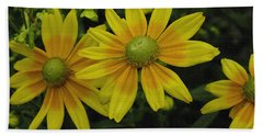 Beach Towel featuring the photograph Yellow Daisies by James C Thomas