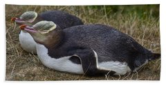 Sleeping Yellow Eyed Penguins Beach Towel