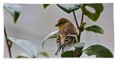 Goldfinch On Branch Beach Sheet
