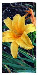 Beach Towel featuring the photograph Yellow Flower by Sergey Lukashin