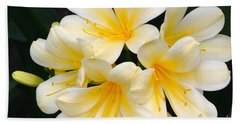 Beach Towel featuring the photograph Clivia Yellow Flowers by Jeannie Rhode