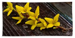 Yellow Forsythia Beach Towel