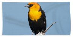 Beach Towel featuring the photograph Yellow Headed Blackbird by Jack Bell