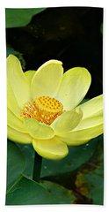Yellow Lotus Beach Sheet