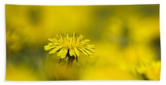 Yellow On Yellow Dandelion Beach Towel