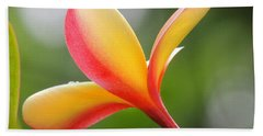 Yellow Pink Plumeria Beach Towel by Kristine Merc