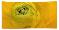 Yellow Ranunculus  Beach Sheet
