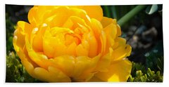 Beach Towel featuring the photograph Yellow Rose by Dee Dee  Whittle