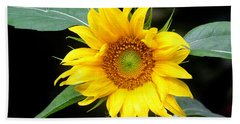 Yellow Sunflower Beach Towel by Trina  Ansel