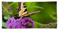 Yellow Tiger Swallow Tail Butterfly Beach Towel