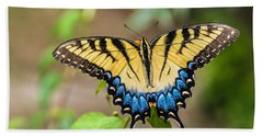 Yellow Tiger Swallowtail Beach Towel by Debbie Green
