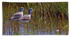 Beach Towel featuring the photograph Yellowlegs Of Texas by Gary Holmes