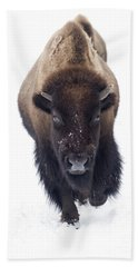 Yellowstone Bison Beach Towel